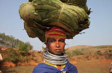Indien Orissa 4