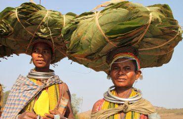 Indien Orissa 9