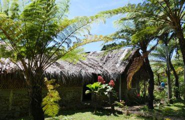 Vanuatu Insel-Gaua BK 00538