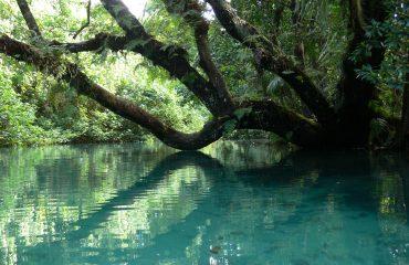 Vanuatu Ri-Ri River