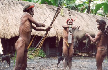 West Papua Schweinefest