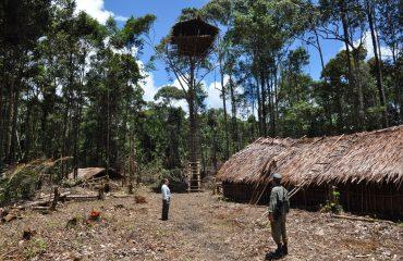 West-Papua Korowai Kombai